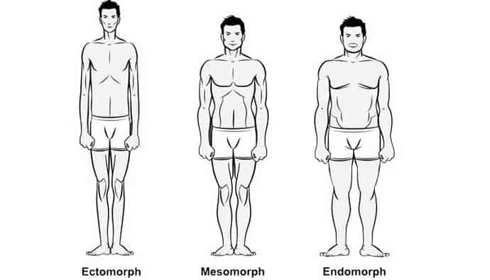 Spearfishing Wetsuit Body Types