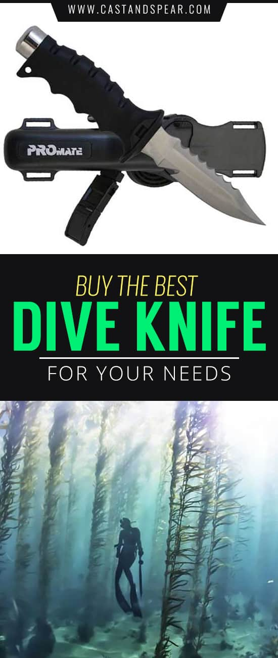 Your dive knife will save your life. Whether you're fending off a predator or need to free yourself from kelp or obstructions. Our buyer's guide will tell you what you need to know!