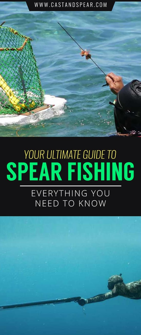 Imagine yourself underwater hunting for your next meal. It's time for you to get in the water and try spearfishing. Our guy will show you how to hit fish consistently.