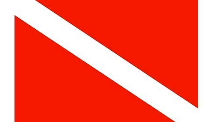 diver down flag large