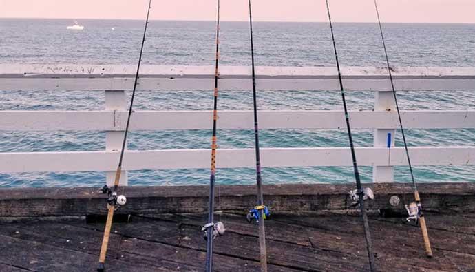 best surf fishing reels