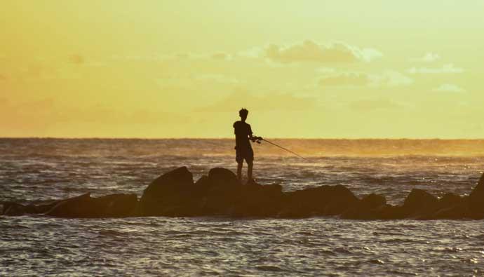 best surf fishing spinning reels