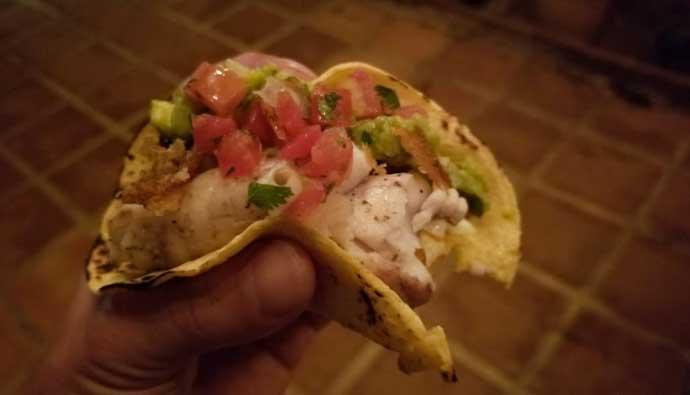 Bonito Fish Tacos
