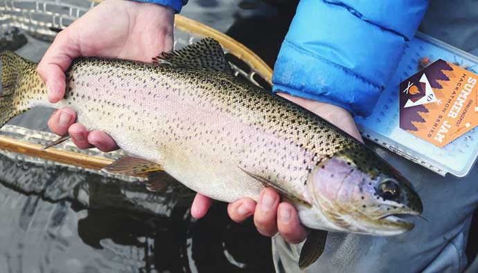 Lady holding trout in river - Trout fishing tips