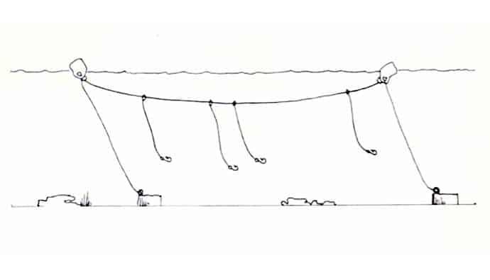 Trotline fishing diagram