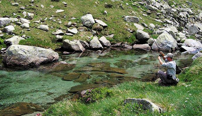crystal clear trout streams