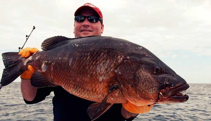 cubera snapper fishing tips