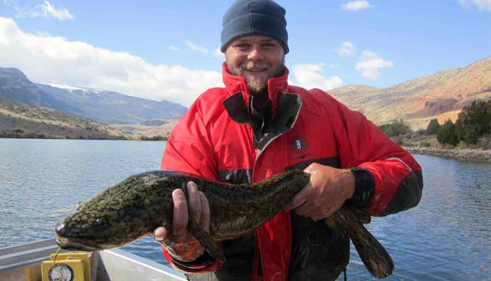 fisherman with a burbot