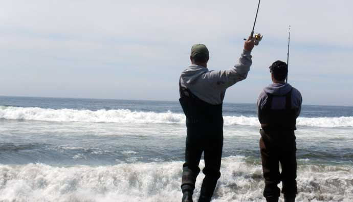 oregon surf perch fishing guide