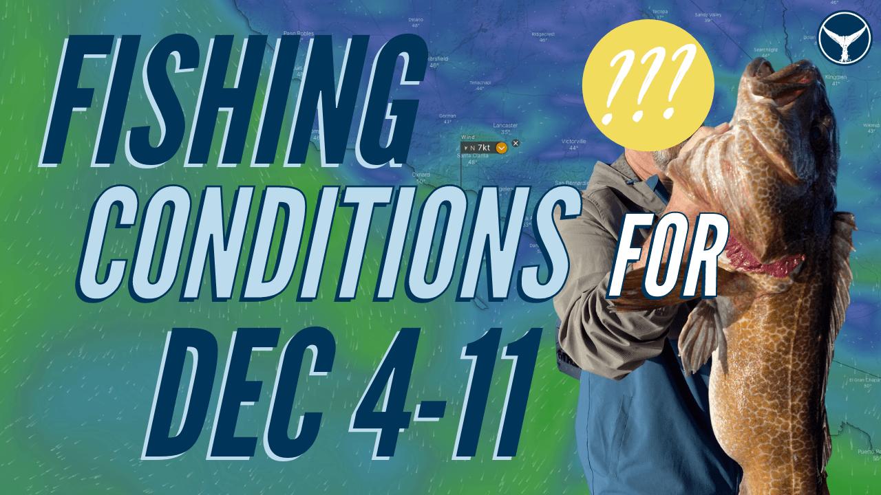California winter fishing forecast december
