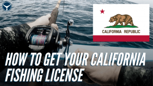 how to buy a California fishing license