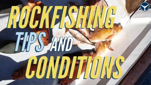 jigging for rockfish