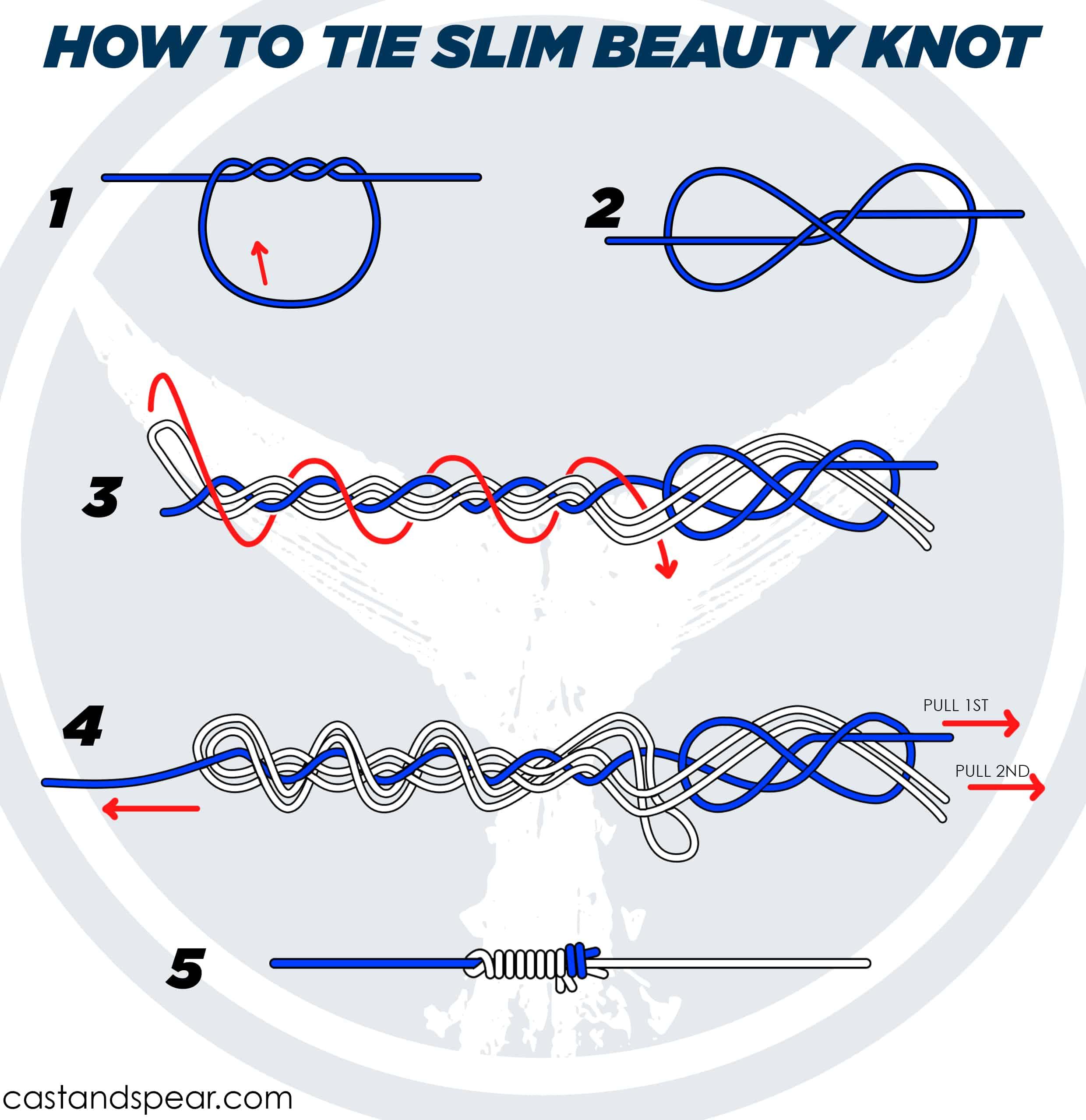 Slim Beauty