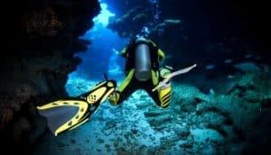 scuba spearfishing